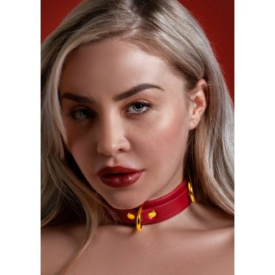 D-Ring Collar Deluxe - Taboom | Aroma Sex Shop