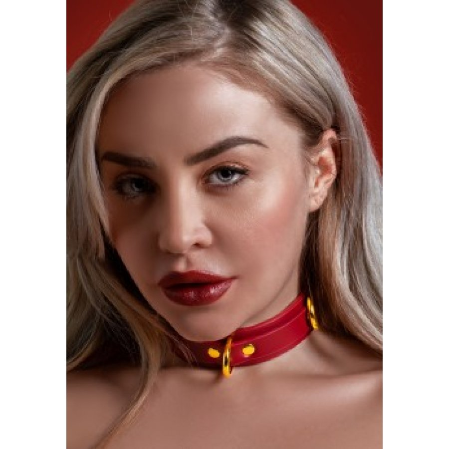 D-Ring Collar Deluxe - Taboom   Aroma Sex Shop